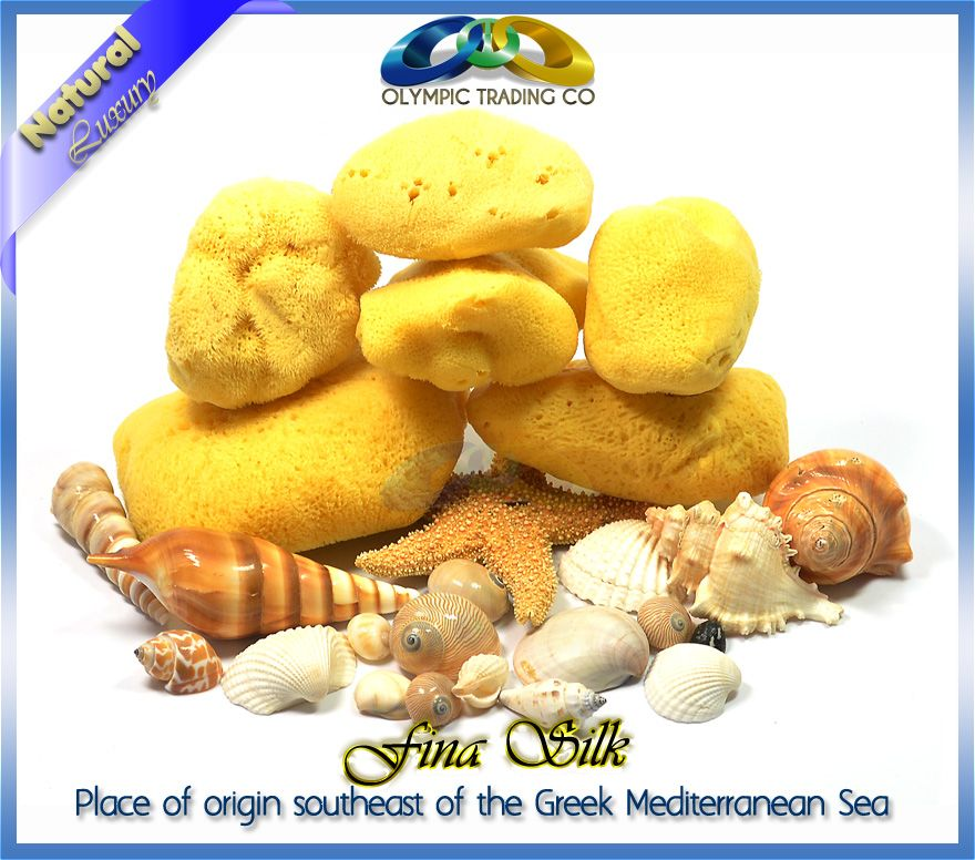 Natural Sponges Mediterranean Fina Silk Sponges